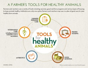 Tools for Healthy Animals