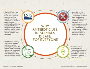 Careful Antibiotic Use Safe for Everyone