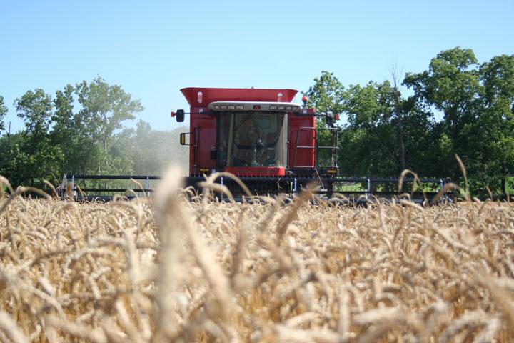 Seasonal Crop Selection