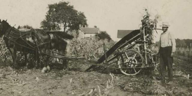 Horse-drawn farm equipment