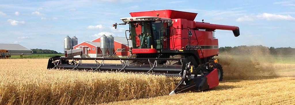 Wheat harvest underway